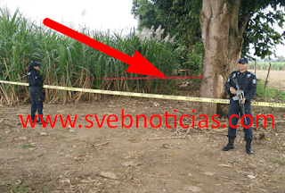 Hallan un ejecutado con narco-mensaje clavado en el cuerpo en Cosamaloapan Veracruz