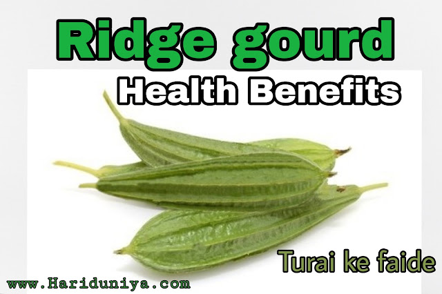 Ridge Gourd Health Benefits | Turai ke Faide |