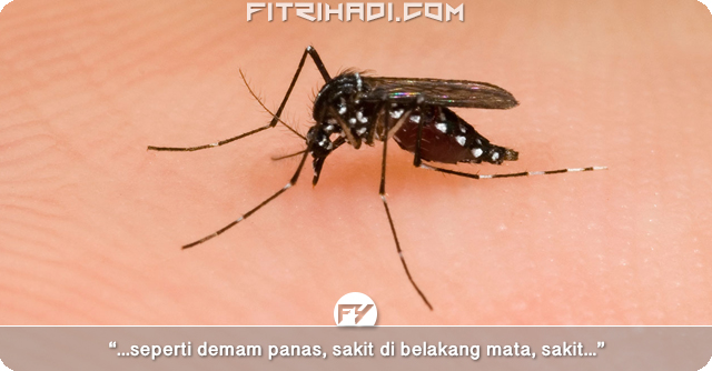 (Info) Tanda-Tanda Gejala Demam Denggi