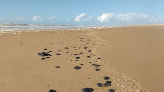 Manchas de óleo surgem em mais nove praias de cinco estados do Nordeste