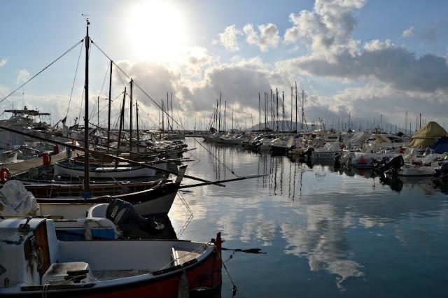 Mare di Sardegna