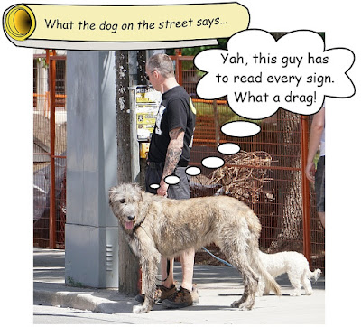 http://dogsarefun.club/2016/07/10/reads-every-sign-what-a-drag/