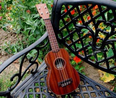 Rex and the Bass: Kala KA SMHS Soprano Ukulele Review