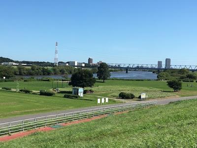 柴又付近の江戸川