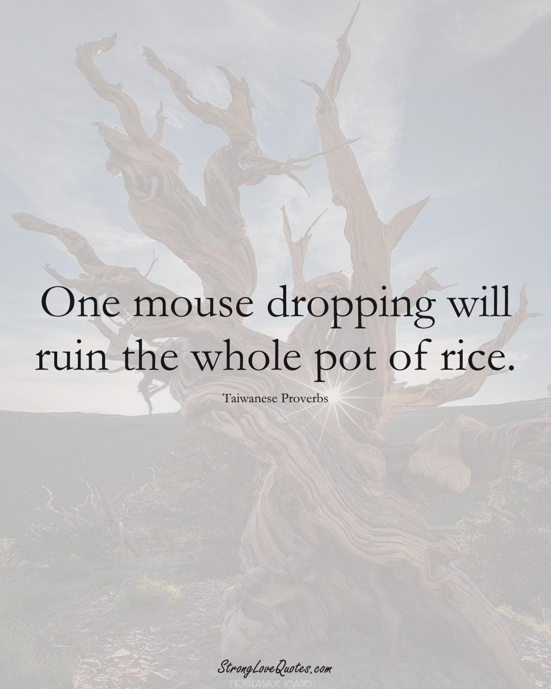 One mouse dropping will ruin the whole pot of rice. (Taiwanese Sayings);  #AsianSayings