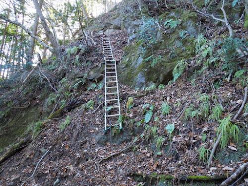 三笠山方面の梯子