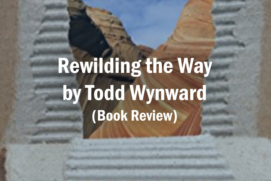 Rewilding the Way by Todd Wynward (Book Review)