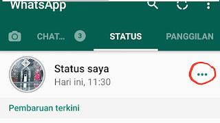 Cara Bikin Status Foto dan Video WhatsApp