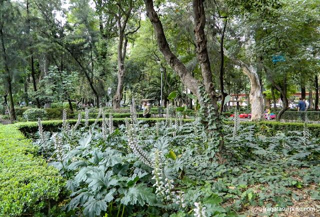 Parque México, bairro de La Condesa, Cidade do México