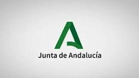 Junta de Andalucía-medidas Covid-19