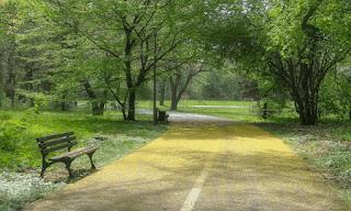 puisi perduli alam dari kebersihan lingkungan