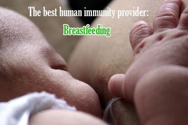 The best human immunity provider: Breastfeeding