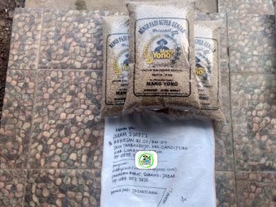 Benih padi TRISAKTI NEW   Pesanan IMAM SYAFI'I Lumajang - Jatim  (Sebelum packing)
