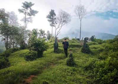 bukit jipang