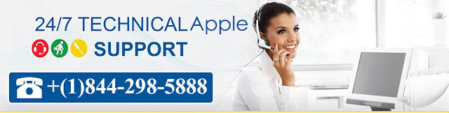 apple support for apple products