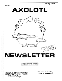 Axolotl Newsletter from Indiana University Axolotl Colony