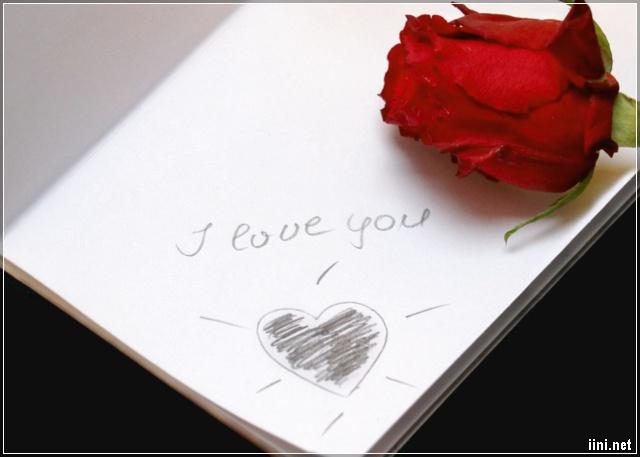 ảnh hoa hồng và trái tim