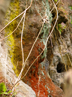 Colorful rock walls on our property in Puriscal.
