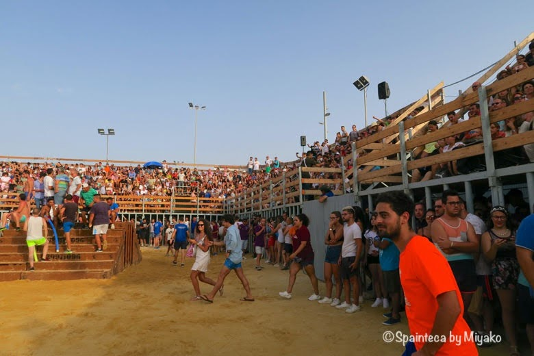 スペイン海の牛追い祭りで牛が海に落ちたあと見物人と会場の様子