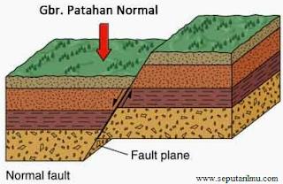 Pengertian dan Dampak Tenaga Tektonik Lengkap