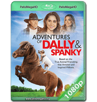 LAS AVENTURAS DE DALLY Y SPANKY (2019) WEB-DL 1080P HD MKV ESPAÑOL LATINO