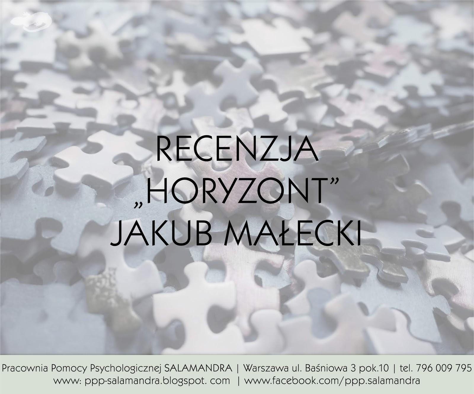 """Opowieść o poszukiwaniu siebie - recenzja książki """"Horyzont"""" Jakuba Małeckiego"""