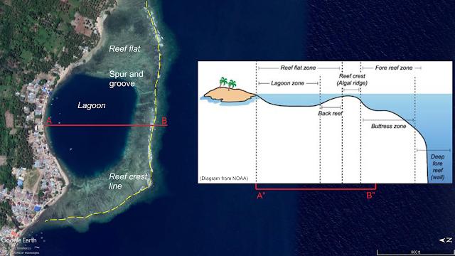 Coral Reef - Terumbu Karang Gorontalo