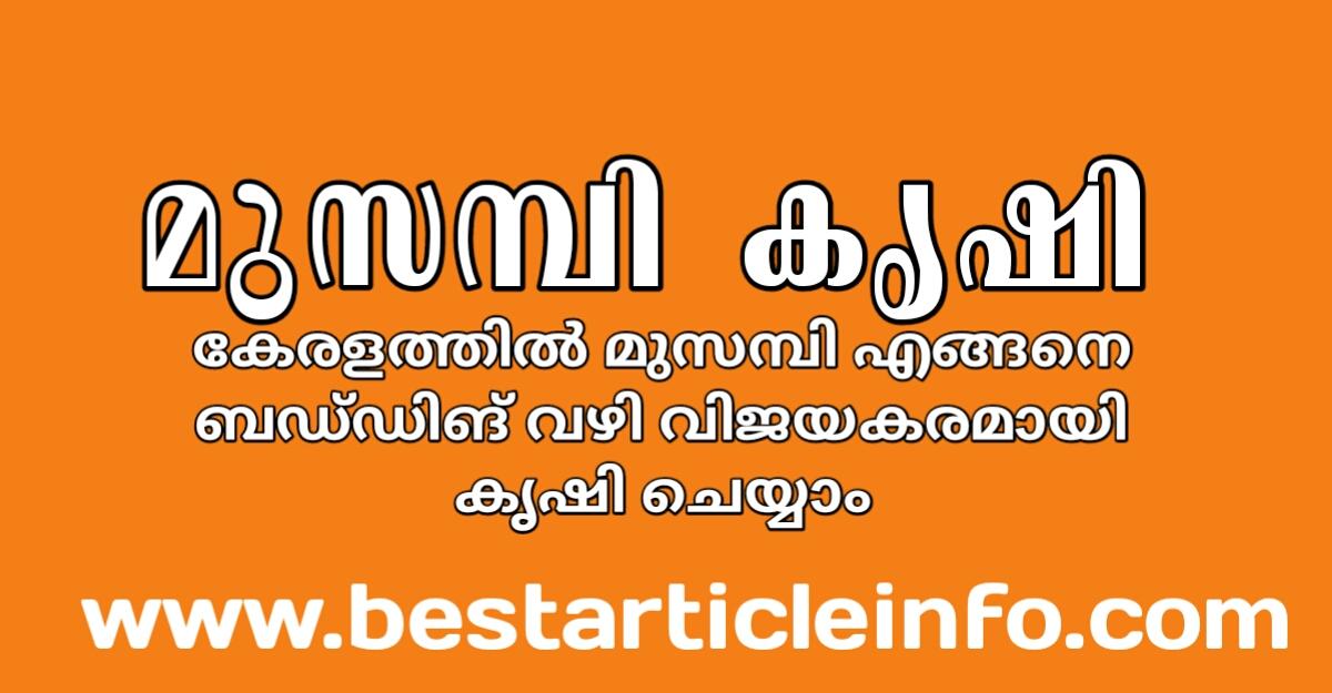 https://www.bestarticleinfo.com/2020/07/Sweet-lemon-budding-agriculture-in-kerala.html