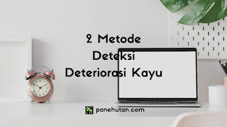 2 Metode Deteksi Deteriorasi Kayu