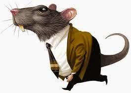 Resultado de imagem para ratazana