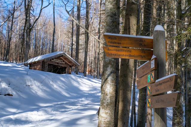 Winterwandern Mauth-Finsterau  Reschbachklause – Siebensteinkopf  Nationalpark Bayerischer Wald 24