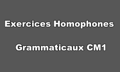 Exercices Homophones Grammaticaux CM1 PDF