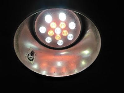 ikeaのVÄXER LED電球 栽培用 PAR30 E26点灯時色味
