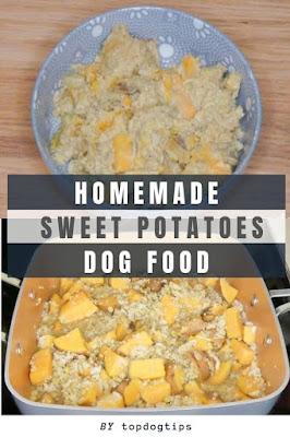 Homemade Sweet Potato Dog Food