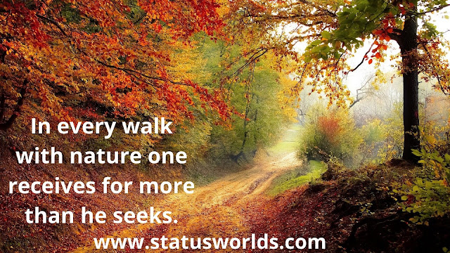 Nature Status and Quotes