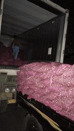 Stratregi Ekpor Bawang Merah ke Dubai By Air