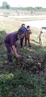 Pemkab Batanghari Sambut New Normal , Bupati Ajak OPD Menanam Pohon Dan Makan Bersama