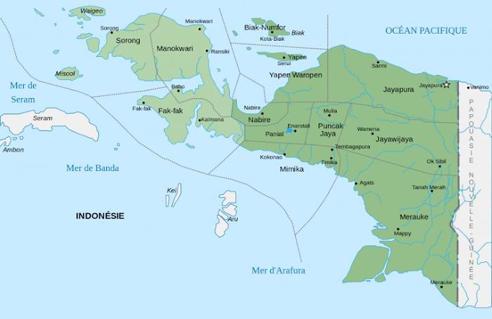 Kehilangan Nurani atas Papua