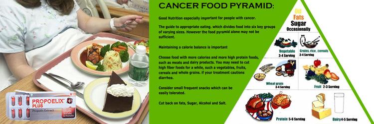 Nutrisi Penderita Kanker