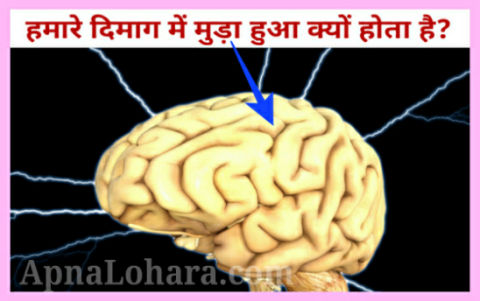 facts about science in daily life, do you know facts about science, interesting science facts that nobody knows,