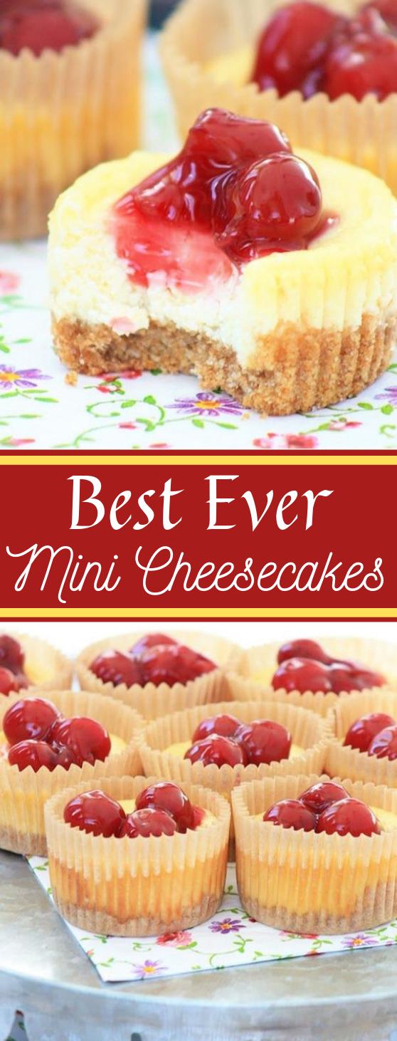 Best Ever Mini Cheesecakes #cupcakes #dessert #minicake #healthy #yummy