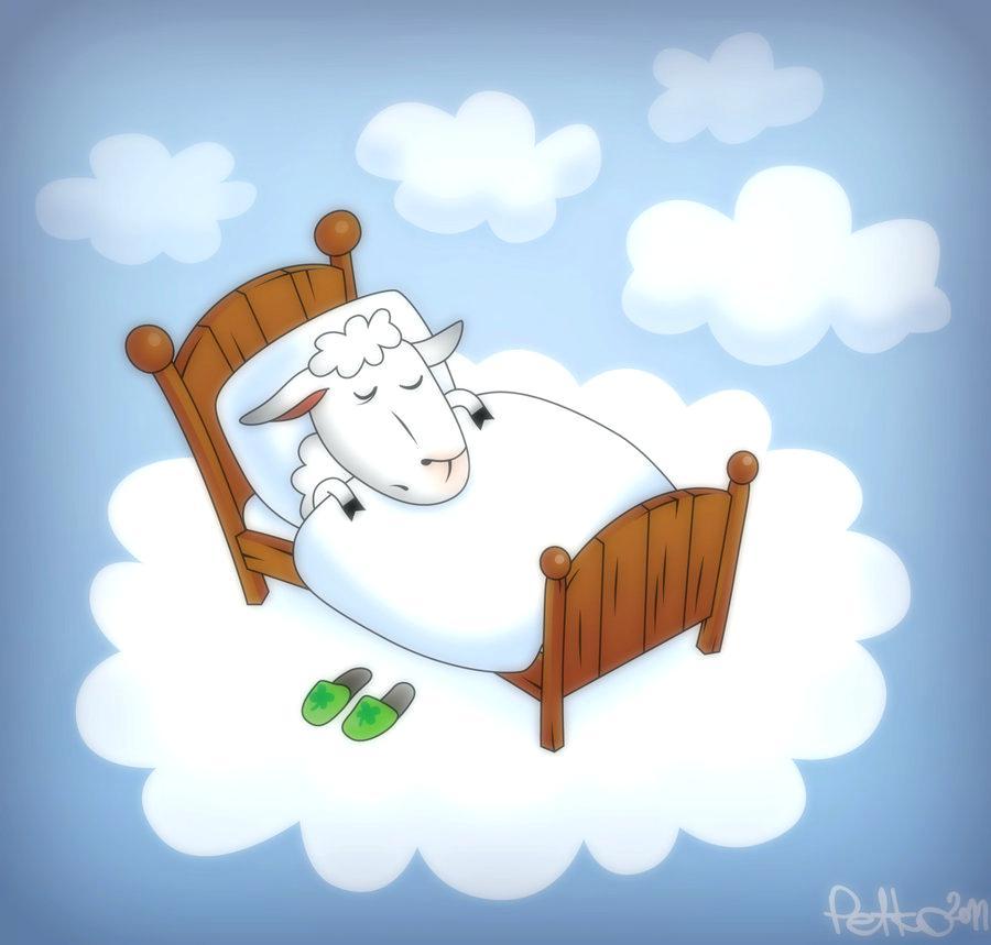 Красивые овечки картинки спокойной ночи, шпицы маленькие поздравление