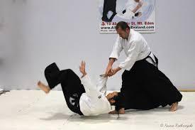 aikido attacks