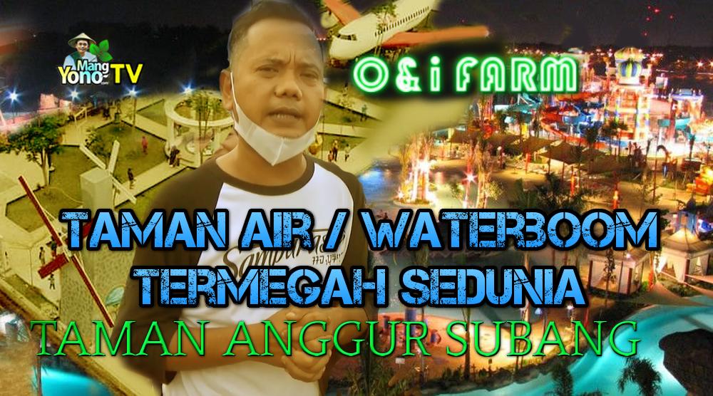 Komedian ONI SOS Sukses Bikin Taman Anggur Lanjut Bikin Waterboom Termegah Sedunia di O&i Farm Subang