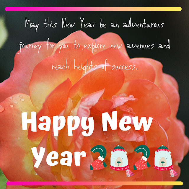 New Year, adventurous, heights, explore, journey, 2020,