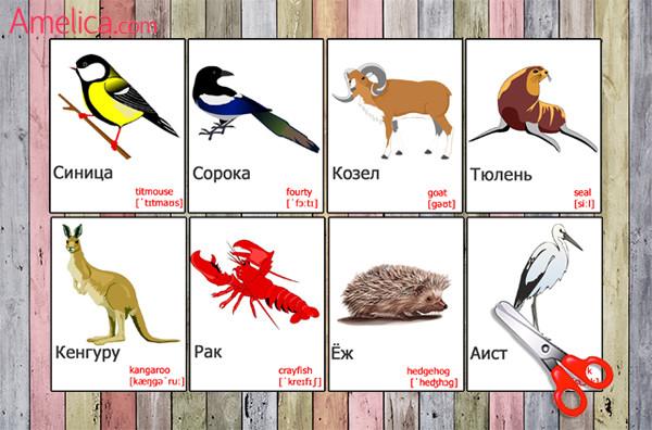Перевести с английского на русский animals