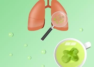 Receita Contra Bronquite: Chá de Poejo