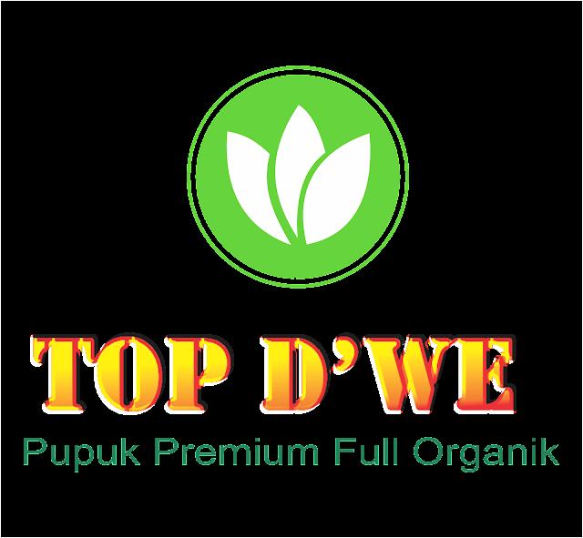 www.topdwe.id