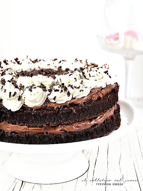 torta-al-cioccolato-caffè-ginseng