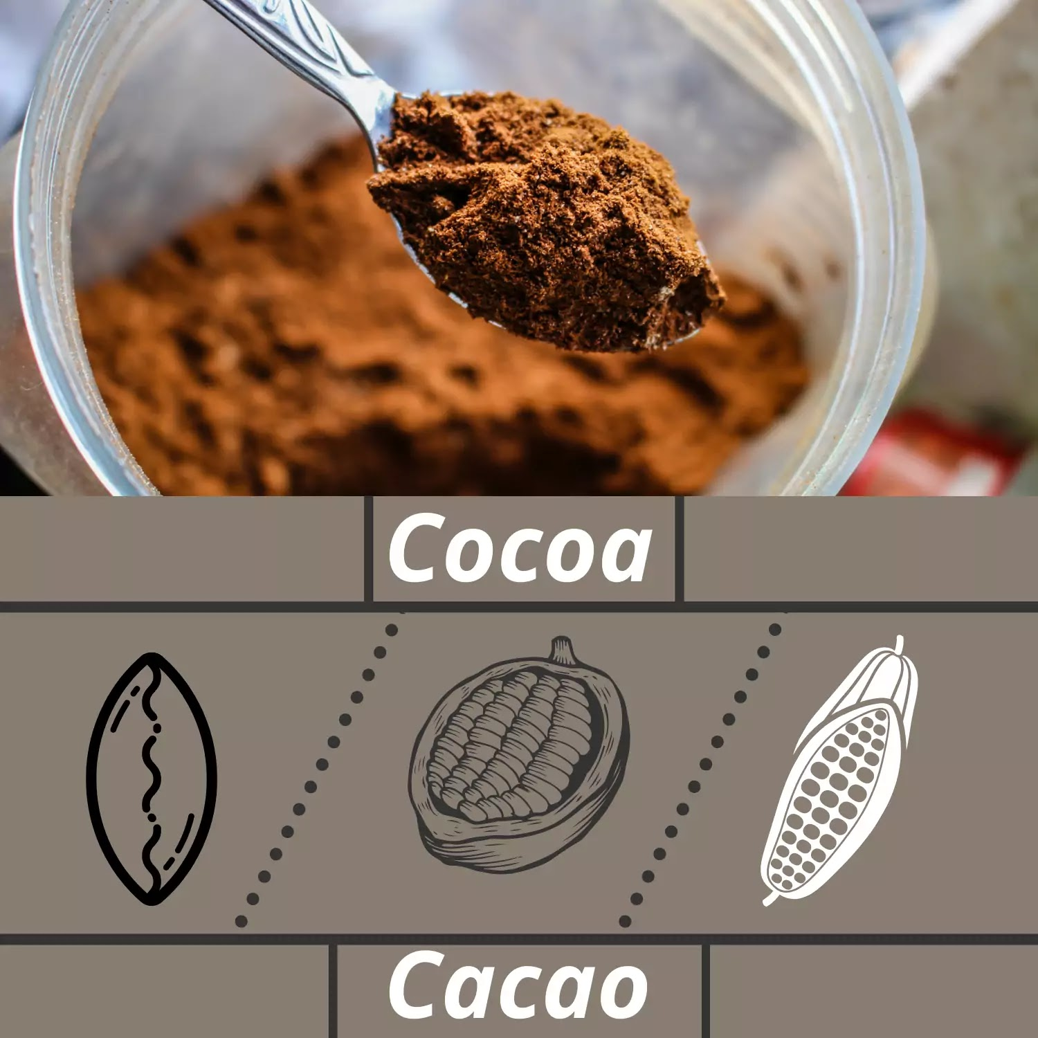 Cacao fat burning food for men